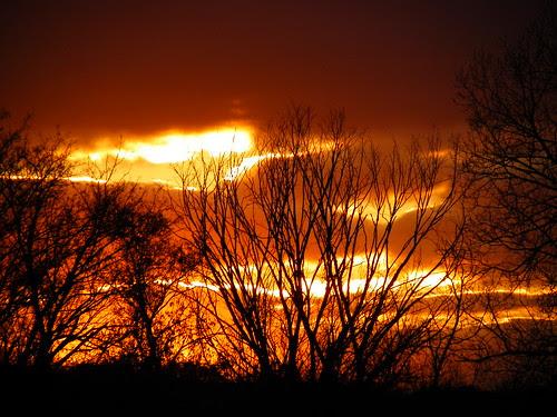 Palos Hills, Saganashkee Slought sunset 10.31.2009 (19)