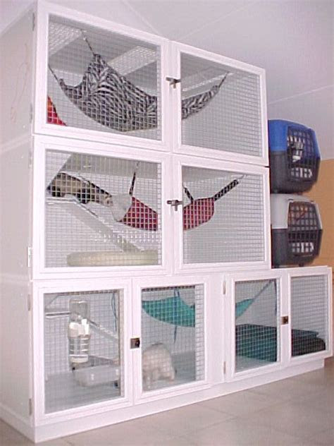 Best 25  Ferret cage ideas on Pinterest   Rat cage diy, Rat cage and Ferrets
