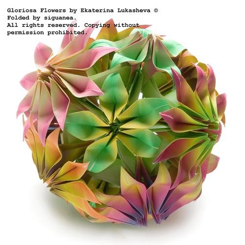 Gloriosa flowers by Ekaterina Lukasheva
