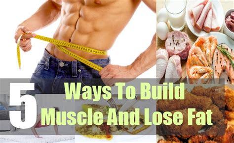 ways  build muscle  lose fat bodybuilding estore