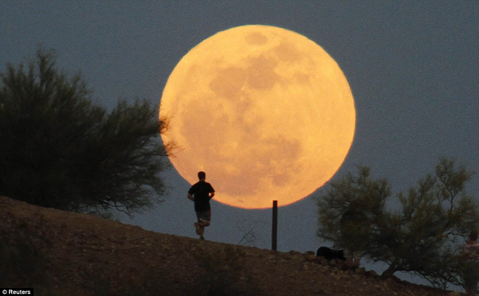 Glowing guide: A runner makes his way along a trail in front of the once-a-year 'super Moon' at Papago Park in Phoenix, Arizona