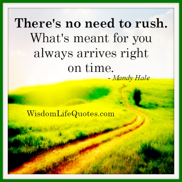 Theres No Need To Rush Over Anything In Life Wisdom Life Quotes