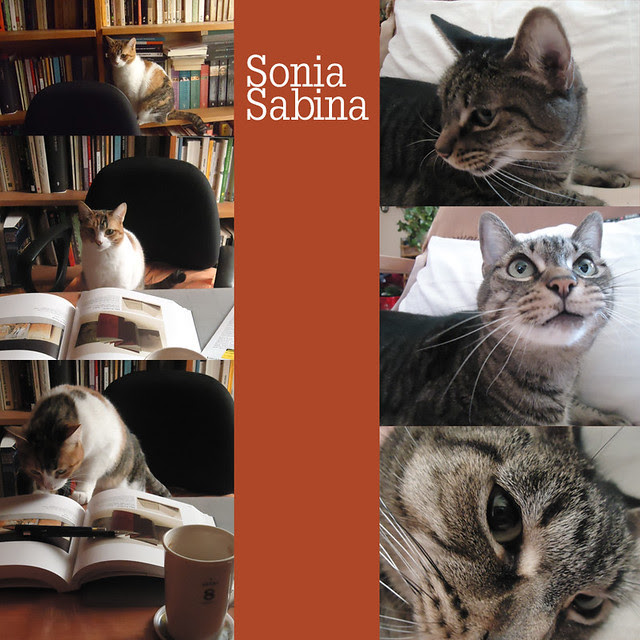 Sonia_Sabina