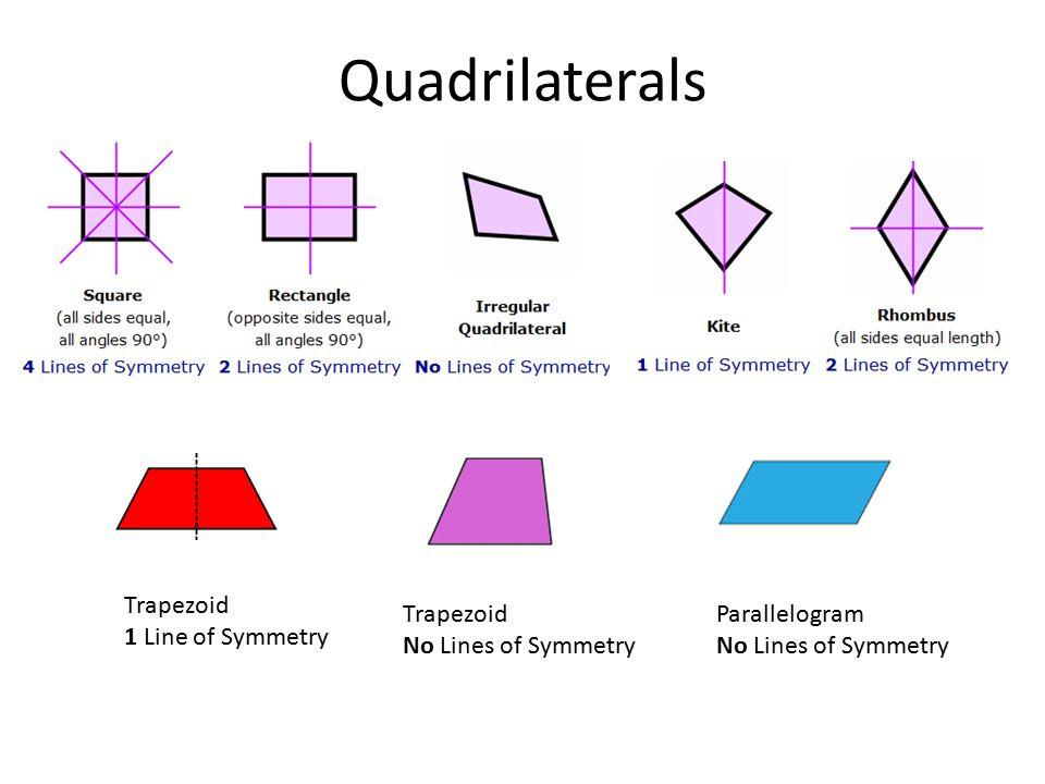 Line & R tati nal Symmetry: Rotational Symmetry