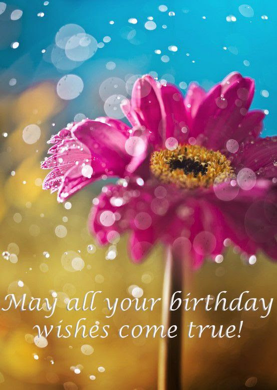May All Your Birthday Wishes Come True Pictures Photos And Images