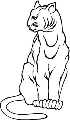 mountain lion coloring page  supercoloring