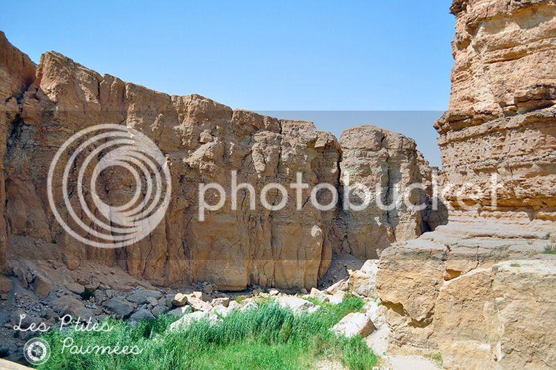 Tamerza Oasis Tunisie