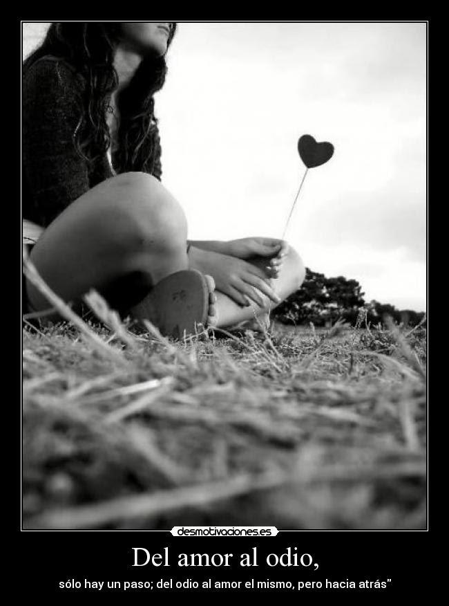 Del Amor Al Odio Desmotivaciones