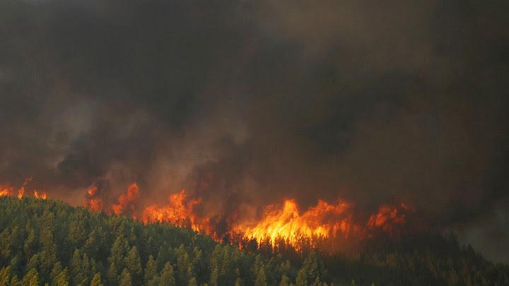 Fires in Evenkia