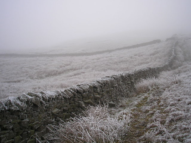 File:Freezing fog - geograph.org.uk - 116054.jpg