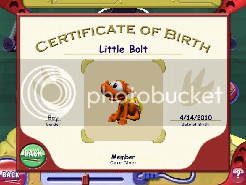Dragon Birth Certificate