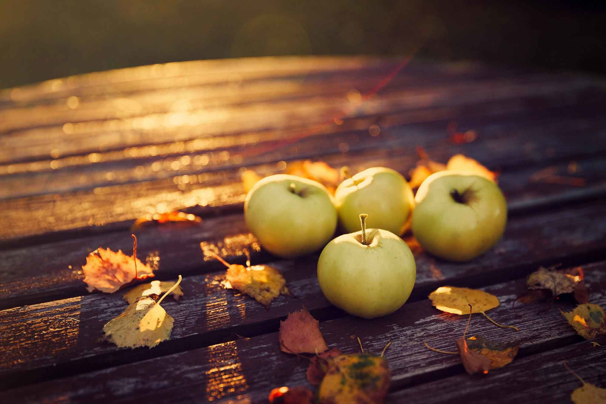 Fall Wallpaper Apple 3d Android Wallpaper