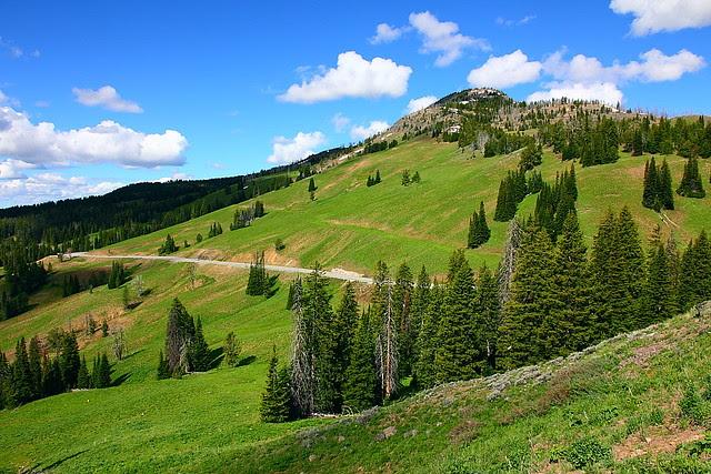 IMG_3046 Mount Washburn Trail