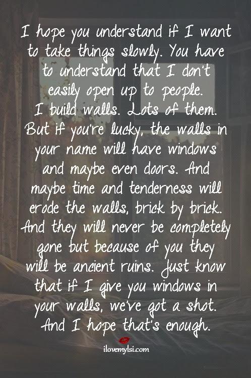 I Build Walls Lots Of Them I Love My Lsi