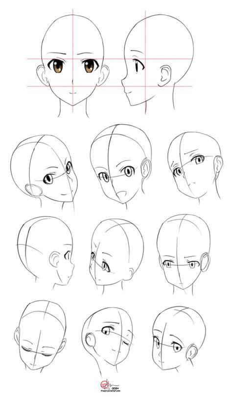 studies anatomy   theafn drawing references