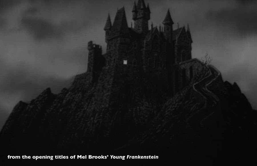 what makes frankenstein a gothic novel Not terribly long ago, i wrote a sywtr post on american gothic literature, and   frankenstein exemplifies the gothic novel in so many ways: a.
