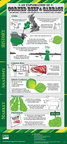 Infographic highlighting the history, anatomy and market of corned beef & cabbage.