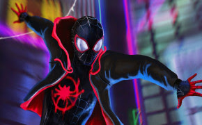 39 Spider Man Into The Spider Verse Wallpapers Hd