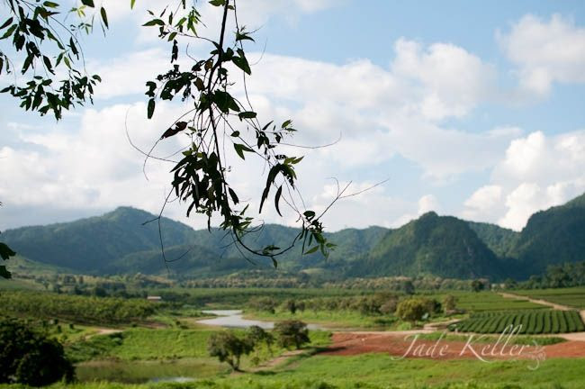 JAN 17: Taking a trip to Chiang Rai photo 2c9e081f-5d5e-444b-8304-360b3beb98c9_zps0c5dec5d.jpg