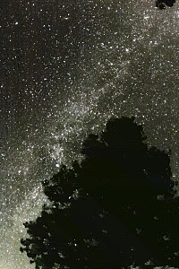 Foto of the Milky Way