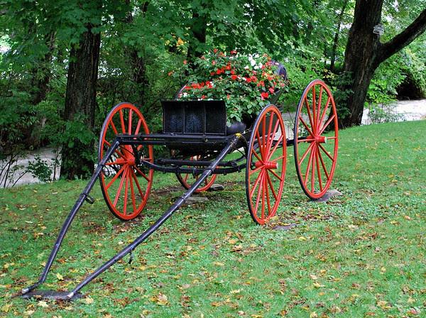 A Flower cart