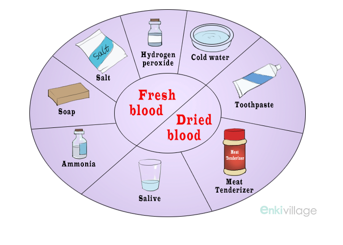 how to get blood out of clothes deney alnola