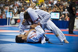 A match between Brazilian Jiu-Jitsu blackbelts...