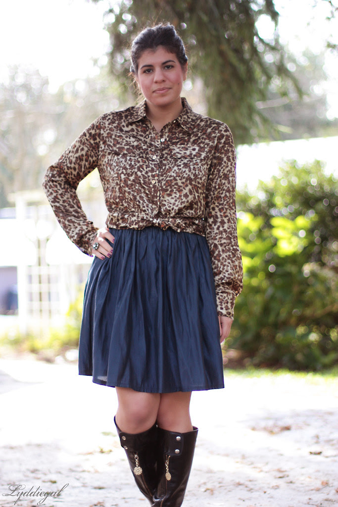 Leopard on top