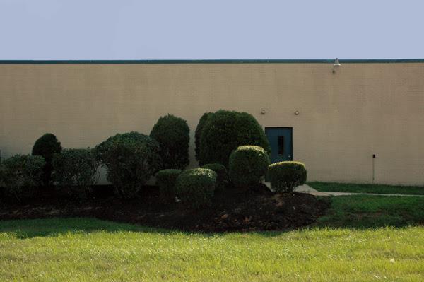 bushes in front of door tech school2-4web