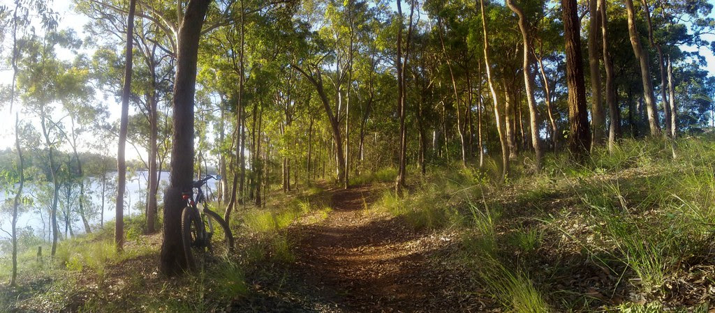 Acacia Park, Murrumba Downs