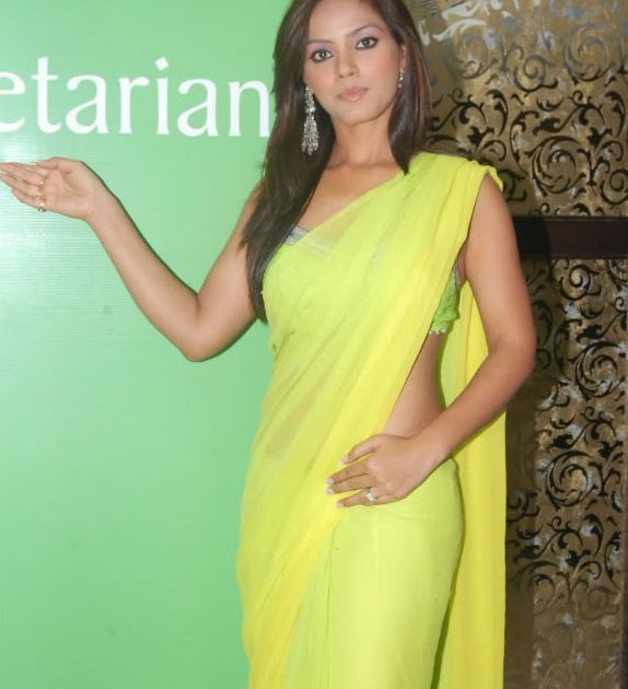 Neetu Chandra Saree Photo