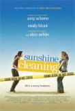 sunshinecleaning1_small