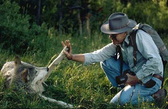 Ζώντας με τους λύκους (5)