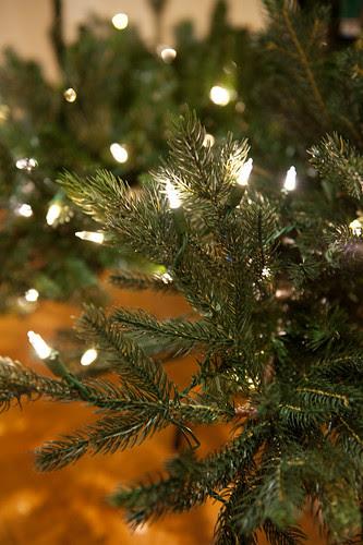 ChristmasTreeBalsamHill-7