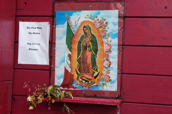 8guadalupe-with-plea.jpg