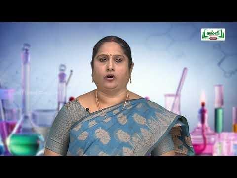 NEET JEE Chemistry Molectular Formula Kalvi TV