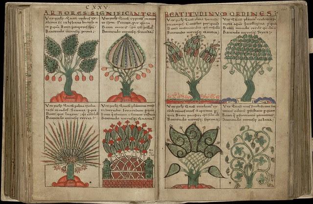 Liber Floridus - plants