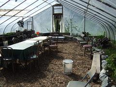 Greenhouse/Classroom