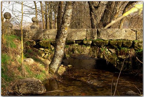 el puente y el riachuelo