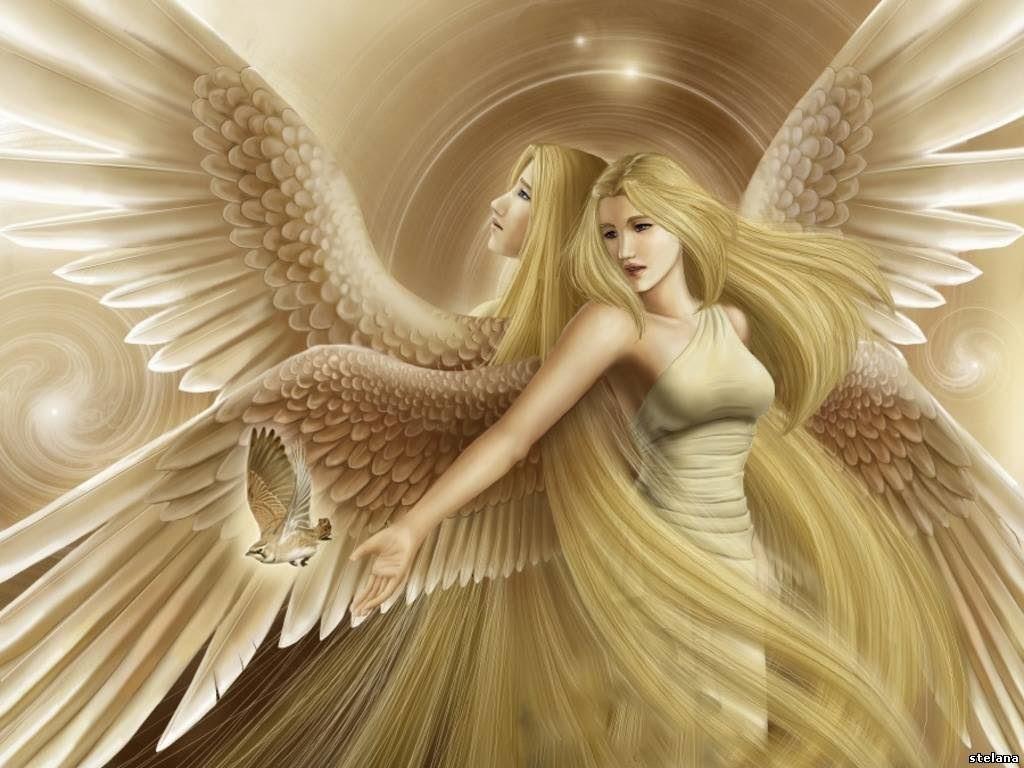 Los Mejores Fondos De ángeles Fondos De Pantalla