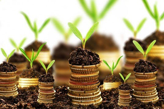 green-investments-537x357
