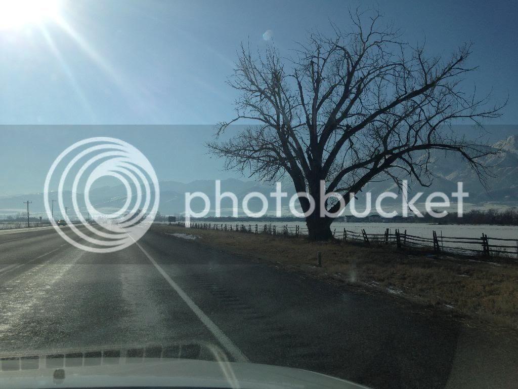 photo 105617D7-B916-4939-AB06-D6E1CA67DC89.jpg