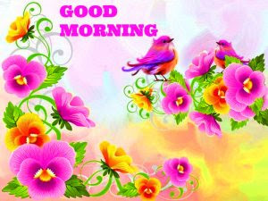 Saturday Good Morning Images Photo Pictures Free With Flower