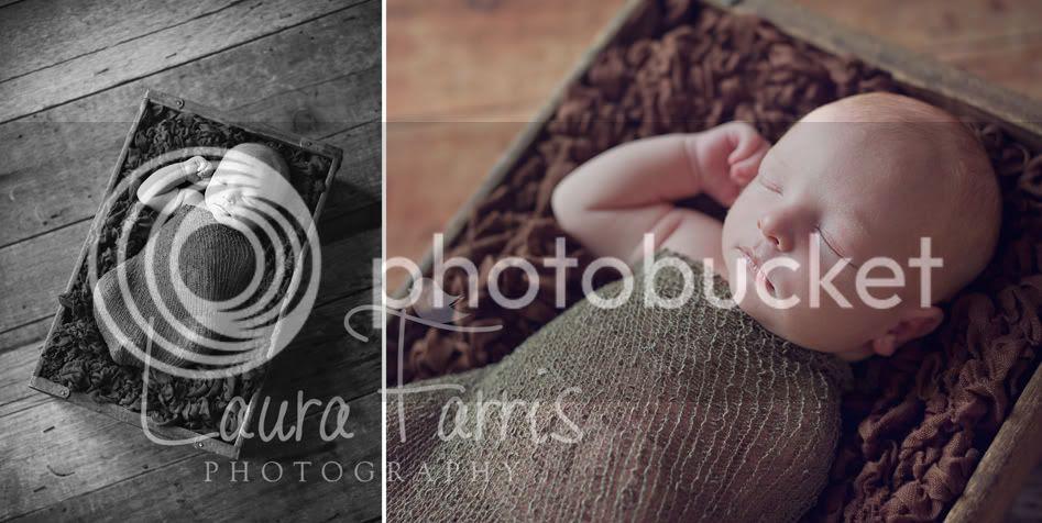 Idaho newborn photographers