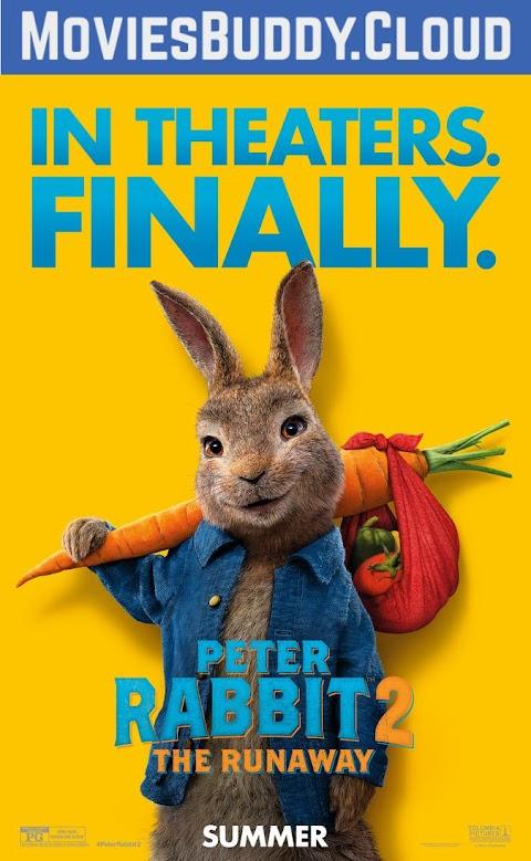 Peter Rabbit 2: The Runaway (2021) 480p 720p 1080p 2160p [4K] BluRay Dual Audio (Hindi+English) Full Movie