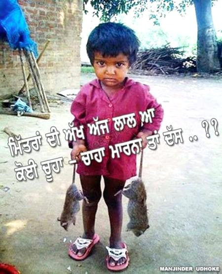 Boy With Rats Image In Punjabi