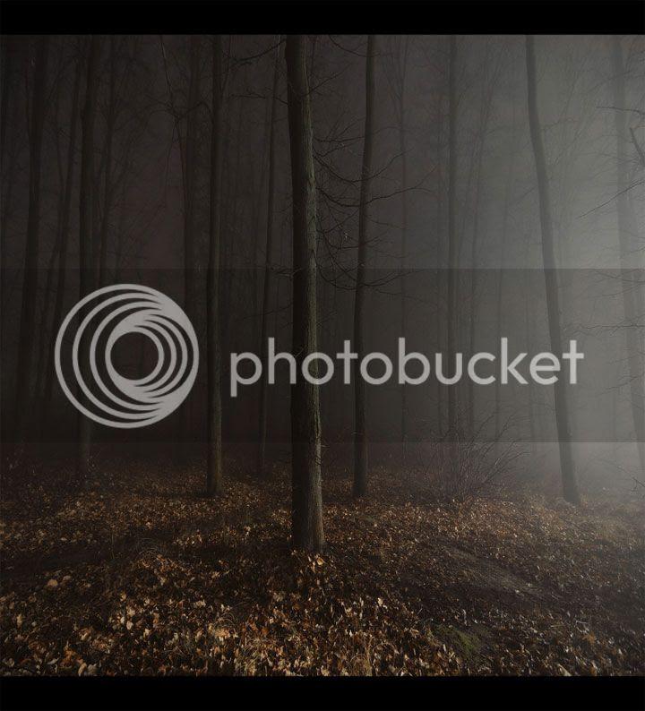 photo Dmitry-Bogachuk-1_zpscd0a2dca.jpg