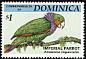 Imperial Amazon Amazona imperialis