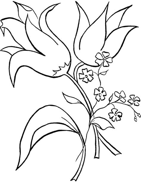 Tropical Flower Coloring Page Creative Art