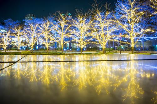Midtown lights, Christmas 2013, Tokyo